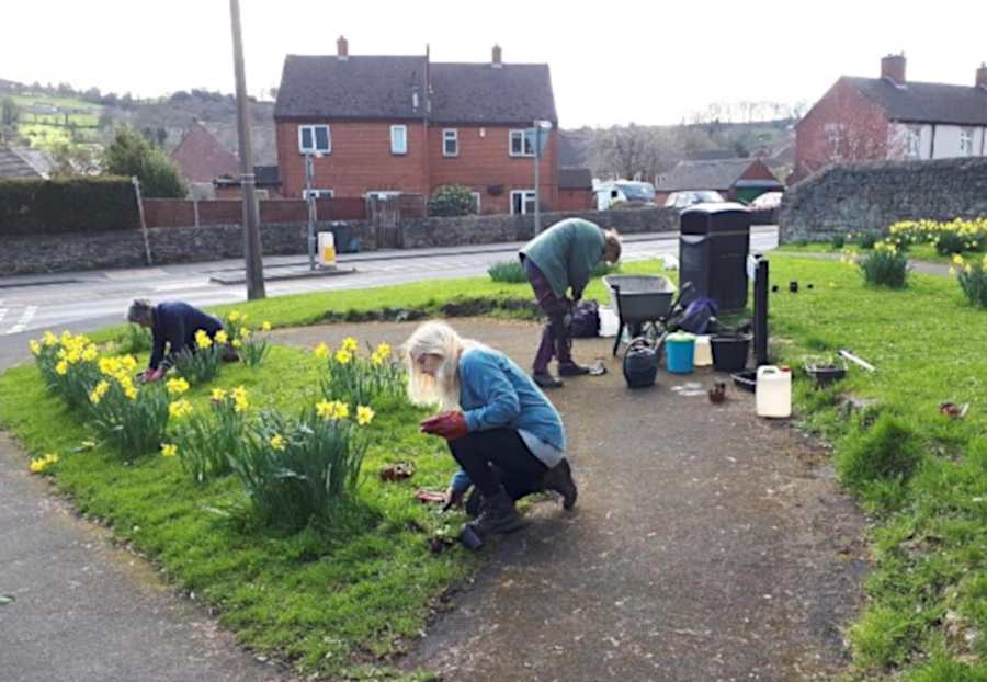 Verge planting Wilder Wirksworth