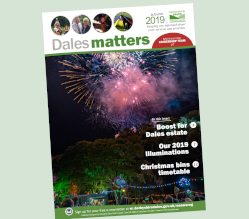 The autumn 2019 edition of our Dales Matters publication will be delivered to households across the district from Monday 21 October.