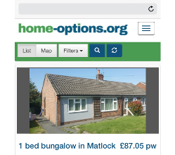 The new-look Home-Options website